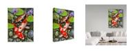 "Trademark Global Howard Robinson 'Koi Under Lily Pads' Canvas Art - 24"" x 18"" x 2"""