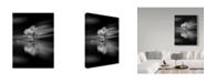 "Trademark Global David Senechal Photographie 'Quiet White Tree' Canvas Art - 14"" x 2"" x 19"""