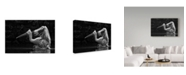 "Trademark Global Cs Tjandra 'Folded Wings' Canvas Art - 32"" x 2"" x 22"""