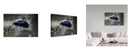 "Trademark Global David H Yang 'Fishing Heron' Canvas Art - 24"" x 2"" x 16"""