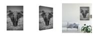 "Trademark Global Jaco Marx 'Singularity Elephant' Canvas Art - 22"" x 2"" x 32"""