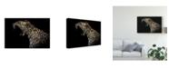 "Trademark Global David Williams 'Amur Leopard Roar' Canvas Art - 19"" x 2"" x 12"""