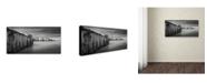 "Trademark Global Dave MacVicar 'Icicle Works' Canvas Art - 10"" x 19"" x 2"""