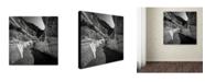 """Trademark Global Dave MacVicar 'Yin Yang' Canvas Art - 14"""" x 14"""" x 2"""""""