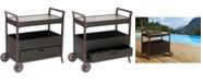 """Hanover Outdoor Bar Cart - 34.83"""" x 21.92"""" x 30.86"""""""