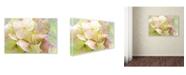 "Trademark Global Tina Lavoie 'Meditation' Canvas Art - 24"" x 16"" x 2"""