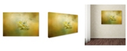 "Trademark Global Jai Johnson 'The Last Yellow Rose' Canvas Art - 32"" x 22"" x 2"""