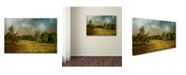 "Trademark Global Jai Johnson 'Tennessee Countryside' Canvas Art - 24"" x 16"" x 2"""