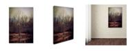 "Trademark Global Jai Johnson 'Warm Winter Peace' Canvas Art - 32"" x 22"" x 2"""
