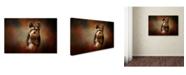 "Trademark Global Jai Johnson 'Step Into Autumn' Canvas Art - 19"" x 12"" x 2"""