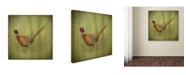 "Trademark Global Jean Plout 'Wilderness Lodge 7' Canvas Art - 18"" x 18"" x 2"""