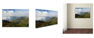 "Trademark Global Mike Jones Photo 'Kauai Kalalou Canyon' Canvas Art - 47"" x 30"" x 2"""