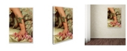 """Trademark Global Vintage Lavoie 'The Roses Of Heliogabalus' Canvas Art - 24"""" x 16"""" x 2"""""""