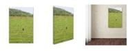 "Trademark Global Robert Harding Picture Library 'Farm Scene' Canvas Art - 32"" x 22"" x 2"""