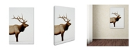 "Trademark Global Robert Harding Picture Library 'Large Animals' Canvas Art - 47"" x 30"" x 2"""