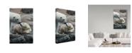 "Trademark Global Robert Michaud 'Polar Bear Sleeping' Canvas Art - 32"" x 22"" x 2"""