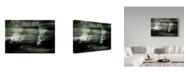 """Trademark Global Yvette Depaepe 'Speed Versus Snooze' Canvas Art - 24"""" x 2"""" x 16"""""""