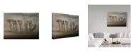 "Trademark Global Yvette Depaepe 'How Nature Hides' Canvas Art - 24"" x 2"" x 18"""