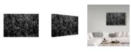 "Trademark Global Michel Romaggi 'Just As Drops Of Light' Canvas Art - 24"" x 2"" x 16"""