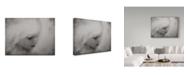 """Trademark Global Yvette Depaepe 'Let Them Be Little' Canvas Art - 24"""" x 2"""" x 18"""""""