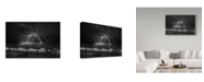 "Trademark Global Yvette Depaepe 'The Power Of Nature' Canvas Art - 32"" x 2"" x 22"""