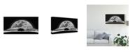 """Trademark Global Nasser Osman 'A Dream Tree' Canvas Art - 24"""" x 2"""" x 12"""""""