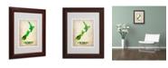 """Trademark Global Naxart 'New Zealand Watercolor Map' Matted Framed Art - 11"""" x 14"""" x 0.5"""""""