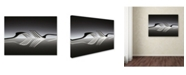 """Trademark Global Wieteke De Kogel 'Opposites' Canvas Art - 47"""" x 35"""" x 2"""""""