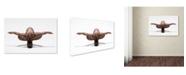 "Trademark Global Ross Oscar 'Perfect Balance' Canvas Art - 32"" x 22"" x 2"""