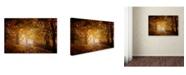 "Trademark Global Ildiko Neer 'Turn To Fall' Canvas Art - 19"" x 12"" x 2"""