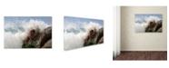 "Trademark Innovations Olga Mest 'All My White' Canvas Art - 24"" x 16"" x 2"""