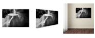 """Trademark Global Roberta Nozza 'Il Sogno' Canvas Art - 24"""" x 16"""" x 2"""""""