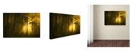 """Trademark Innovations Norbert Maier 'Yellow' Canvas Art - 24"""" x 16"""" x 2"""""""