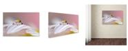 "Trademark Global Jesus M Garcia 'Magical Drop' Canvas Art - 24"" x 16"" x 2"""