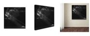 """Trademark Global Yvette Depaepe 'Endless Prairies' Canvas Art - 35"""" x 35"""" x 2"""""""