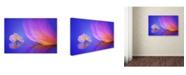"Trademark Global Sophie Pan 'Dream' Canvas Art - 47"" x 30"" x 2"""