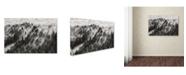 """Trademark Global Davorin Baloh 'Sundance No1' Canvas Art - 19"""" x 12"""" x 2"""""""