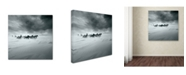 "Trademark Global Shu Guang Yang 'Snowy Field' Canvas Art - 24"" x 24"" x 2"""