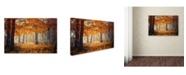 "Trademark Global Ildiko Neer 'Hideaway' Canvas Art - 47"" x 30"" x 2"""