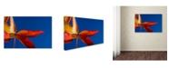 "Trademark Global PIPA Fine Art 'Fall Colors' Canvas Art - 12"" x 19"""