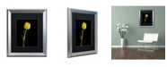 "Trademark Global PIPA Fine Art 'Yellow Tulip Black Background 5' Matted Framed Art - 16"" x 20"""