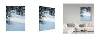 "Trademark Global Ron Parker 'Forest Trek' Canvas Art - 18"" x 24"""