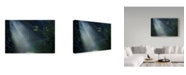 "Trademark Global Istvan Nagy 'Beam Of Light' Canvas Art - 24"" x 16"""