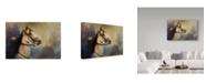 "Trademark Global Jai Johnson 'Whoa Slow Down' Canvas Art - 24"" x 16"""