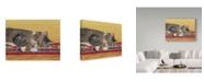 "Trademark Global Janet Pidoux 'Sleepy Sam' Canvas Art - 24"" x 18"""