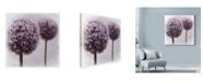 "Trademark Global Tom Quartermaine '2 Purple Alliums' Canvas Art - 18"" x 18"""