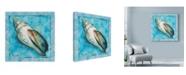 """Trademark Global Marietta Cohen Art And Design 'Shell Scallop 2' Canvas Art - 24"""" x 24"""""""