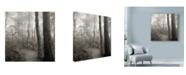 "Trademark Global Nicholas Bell Photography 'Woodland Path' Canvas Art - 14"" x 14"""