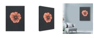 "Trademark Global Nicky Kumar 'Peach Flower On Gray' Canvas Art - 18"" x 24"""