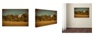 "Trademark Global PIPA Fine Art 'Abandoned Barn In The Trees' Canvas Art - 22"" x 32"""
